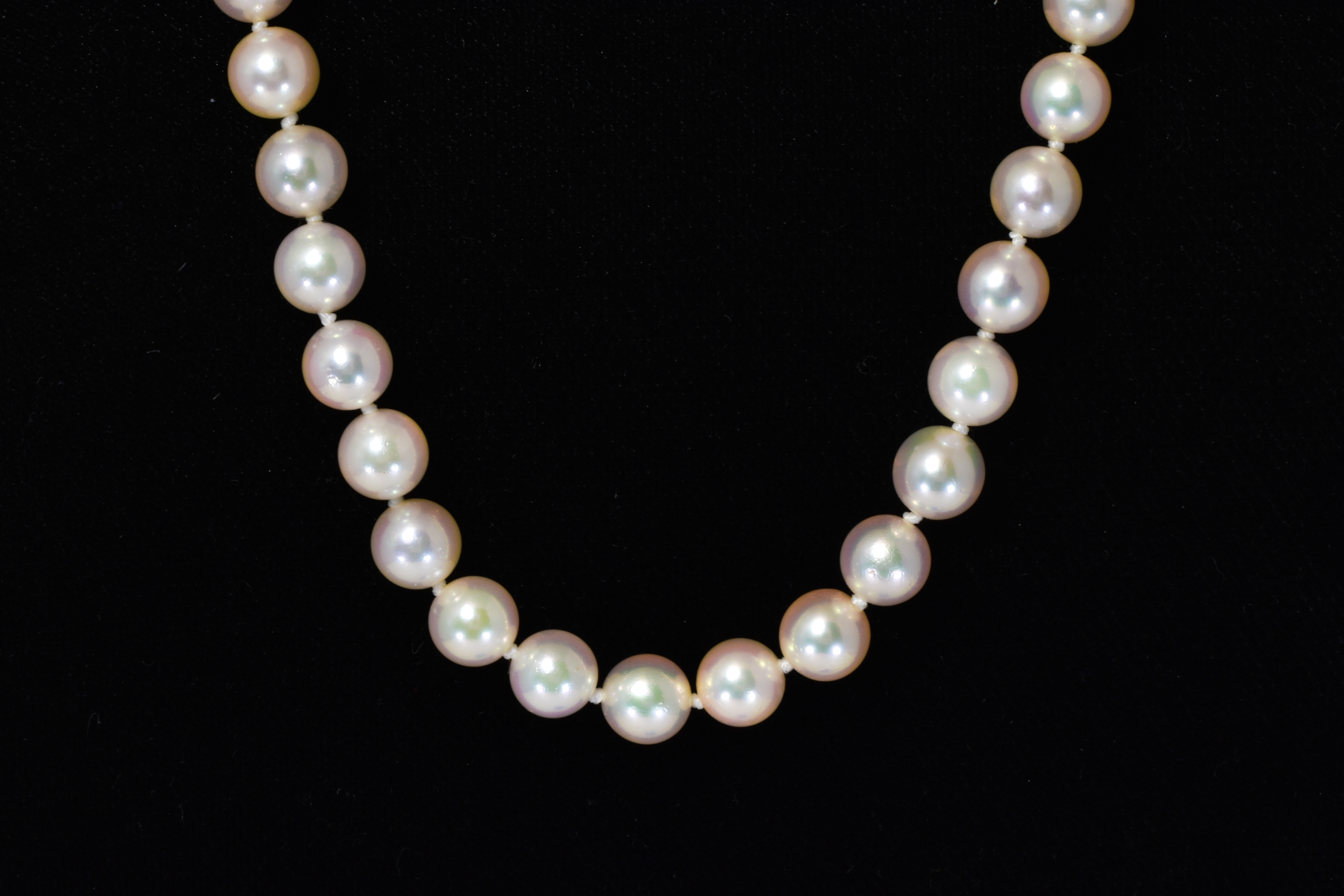 Pearl Strand 20 Inch Necklace with 14 kt White Gold Clasp 6.0 mm-6.5 mm